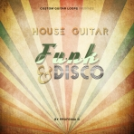 House Guitar; Funk & Disco