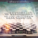 the Wonderland; Bass Guitar Grooves